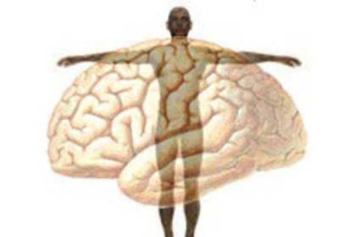 Quando O Corpo Adoece