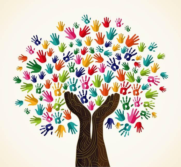 A Importância Do Psicólogo Na Comunidade